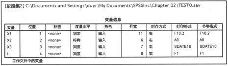 SPSS在输出查看器中查看文件和变量信息